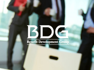 Benefit Development Group's WordPress Website
